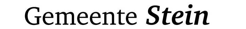Logo gemeente Stein